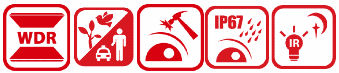 DS-2CD2166G2-ISU_Icons.png