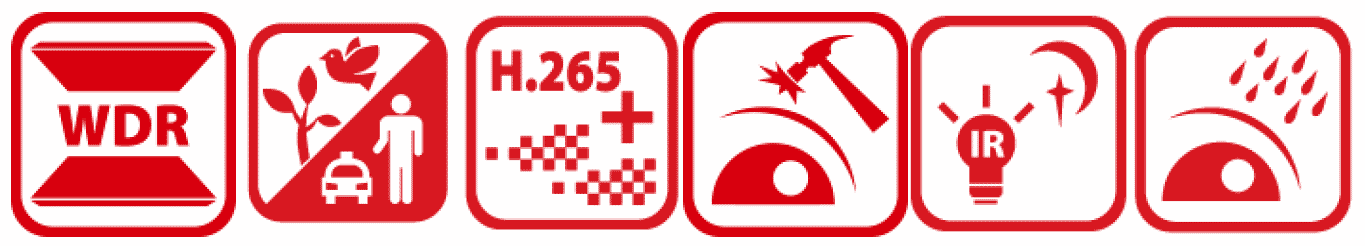 DS-2CD2H46G2-IZS-Icons.png