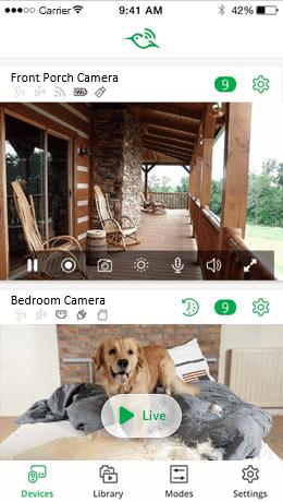 camera_feed_screenshot.png